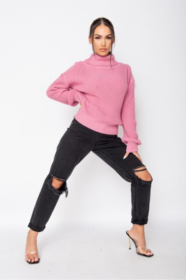 pink-roll-neck-ribbed-jumper-p9527-1080182_image