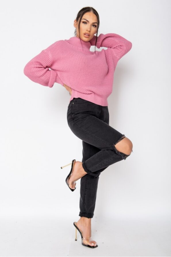 pink-roll-neck-ribbed-jumper-p9527-1080184_image