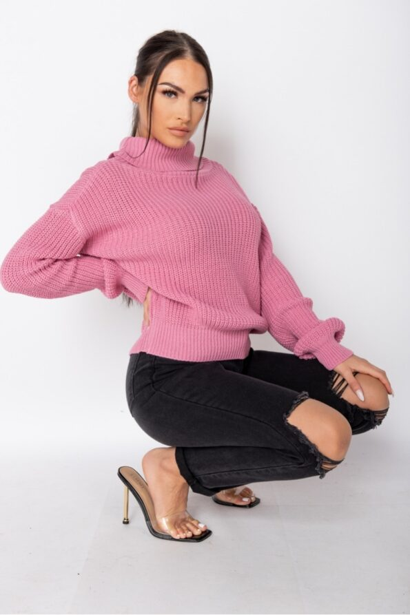 pink-roll-neck-ribbed-jumper-p9527-1080186_image